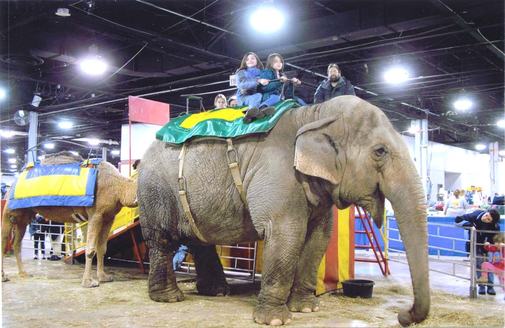 Mariel and Deb ride an elephant